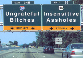 bitchesroadsigns.jpg